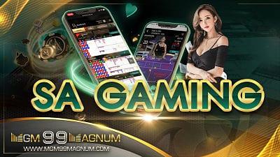 สล็อต SA Gaming แตกง่าย